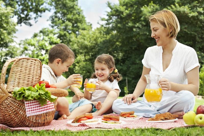 Семейный пикник-фото