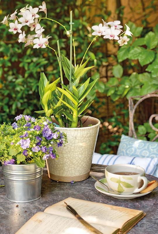 Весенние работы в саду-уютный сад