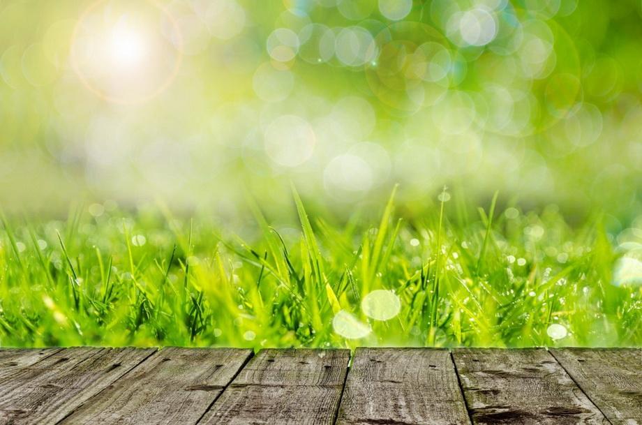 Весна в саду-на пороге