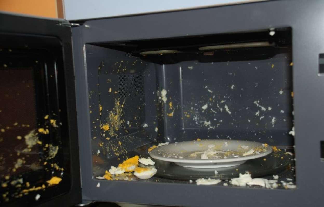 10 мифов и заблюждений о микроволновых печах - яйцо взорвалось в микроволновке