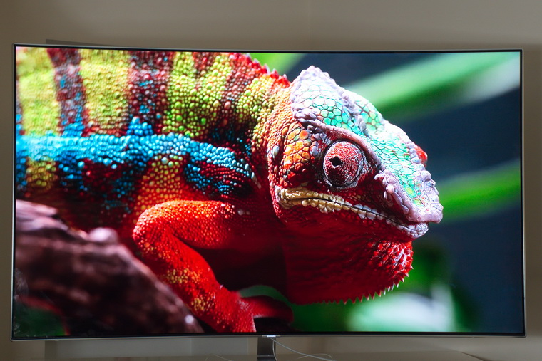Новинки от Samsung 2018 года_телевизоры-хамелеоны уже скоро появятся в продаже - хамелеон на экране телевизора