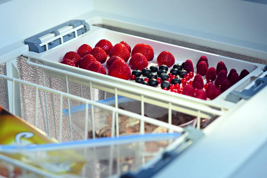 Запасайся вкусностями на круглый год_выбираем морозилку для фруктов - продукты в ларе