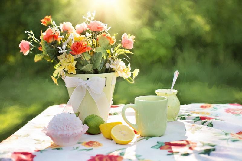 summer-garden outdoors flowers