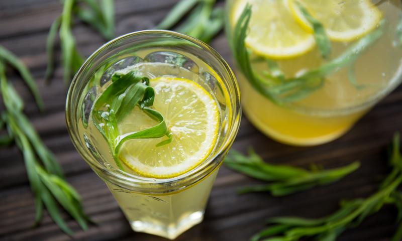 Домашний лимонад с тархуном-подача