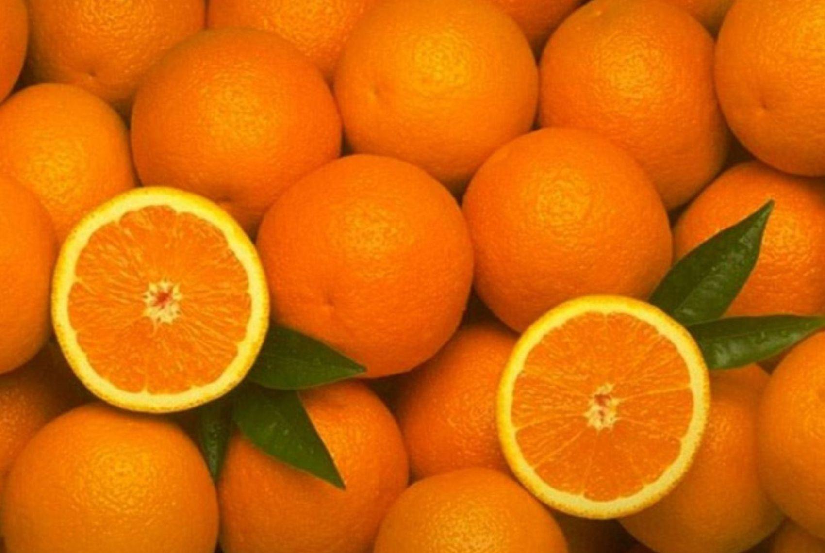 Лучшие соковыжималки с цитрус-прессами - цитрусовые плоды