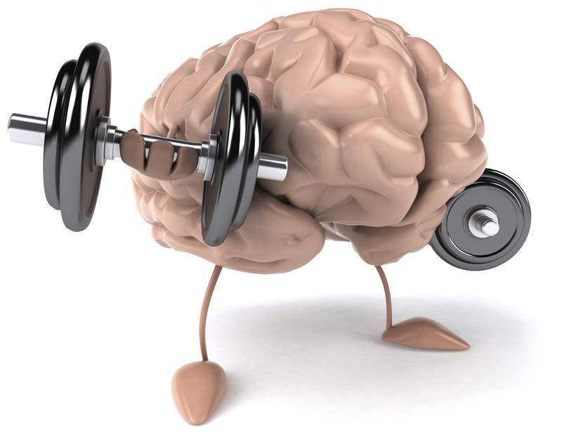 Мозг требует утренней зарядки