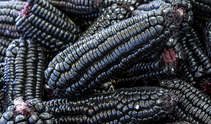 maiz morado-синяя кукуруза