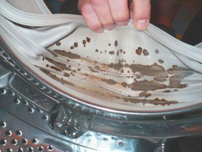 Пліснява у барабані
