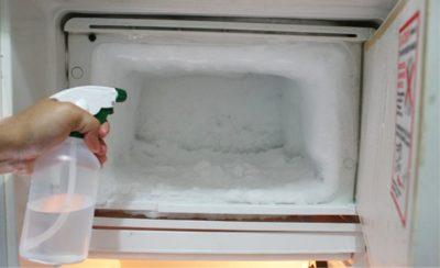 «Ледяная шуба в морозилке»