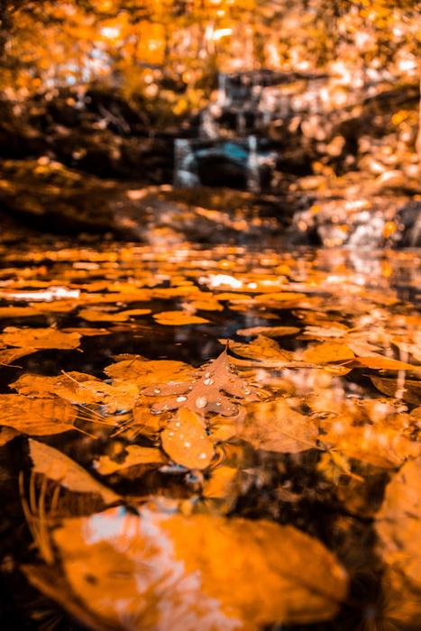 Красота природы осенью-фото 1