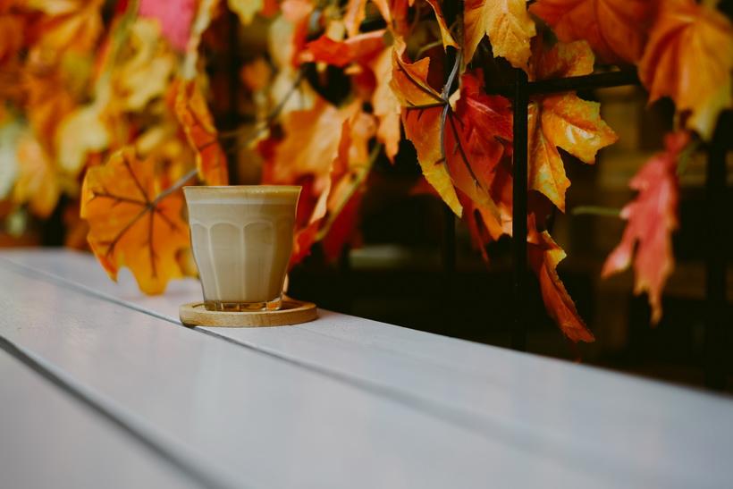 Латте-как согреться осенью