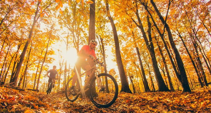 Осень-велопрогулка