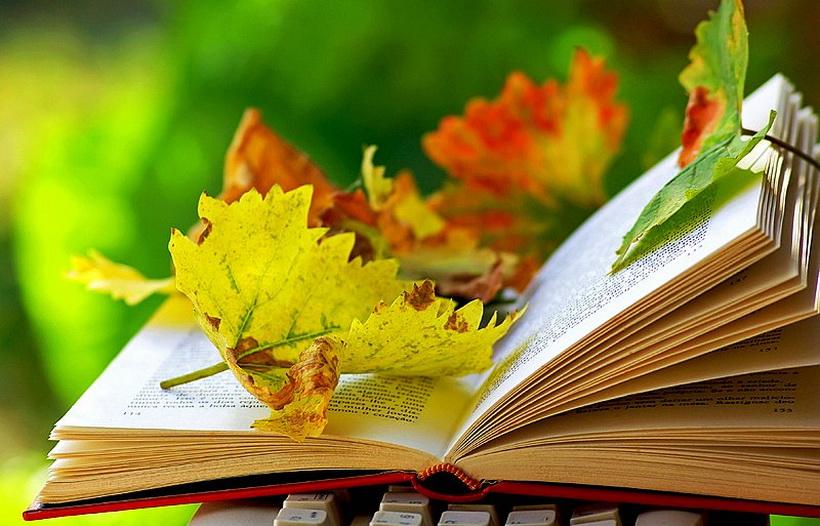 Осенние чтения-книга