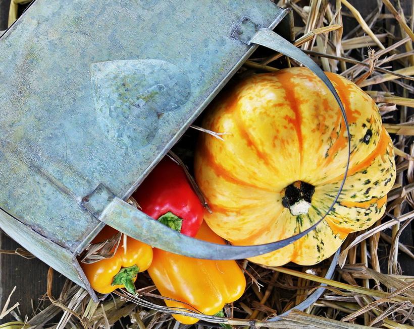 Урожай-дары осени