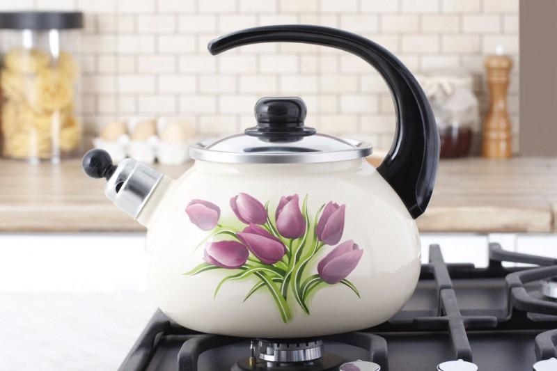 Выбор электрического чайника 2018_независимые эксперты - чайник на плите