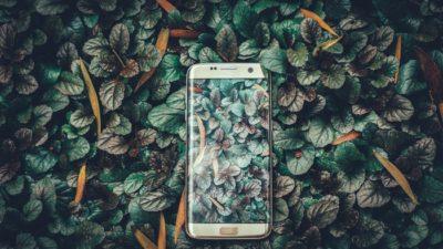 смартфон в лесу