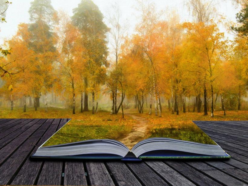 Чтение книг-борьба с депрессией