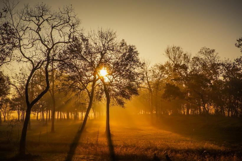 Осенний пейзаж-ноябрь