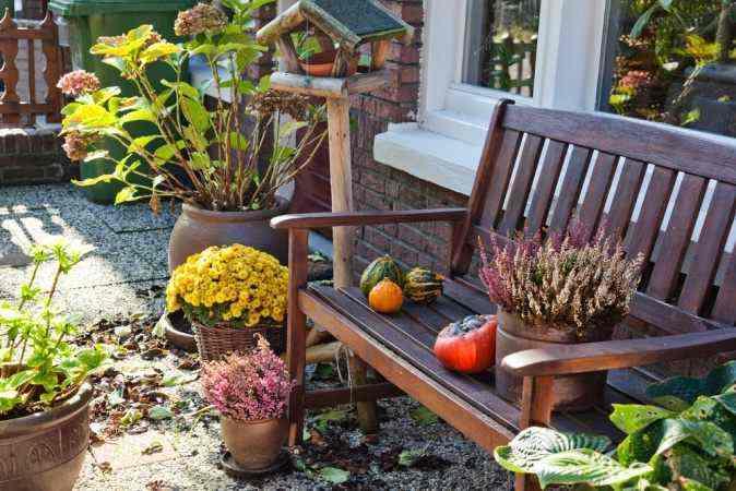 Осенний сад-работы