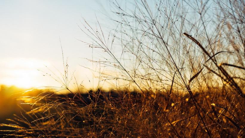 Осенний закат-момент