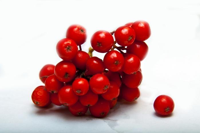 Рябина-ягоды