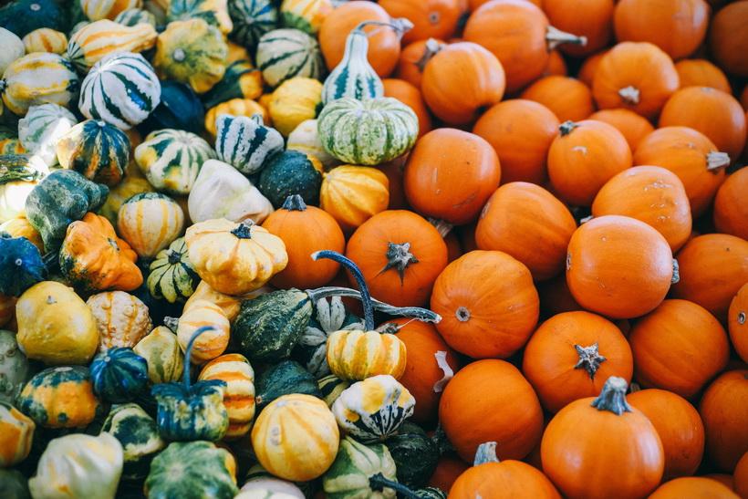 Тыквенный сезон-золотая осень