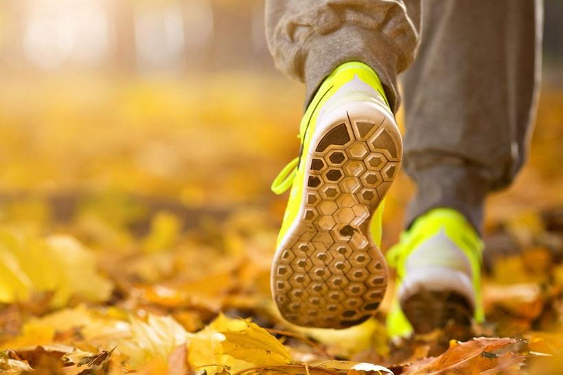 Утренняя пробежка-золотая осень