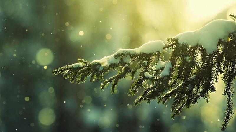 Новый год-ожидание чудес