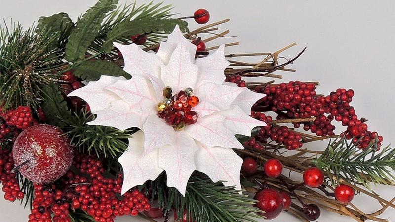 Пуансеттия-рождественская звезда