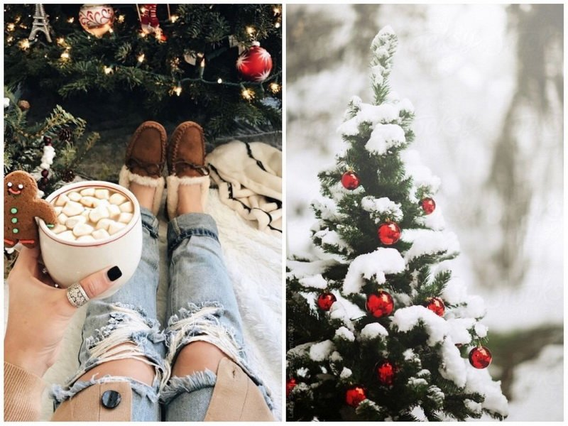 Новогодние каникулы-у елки