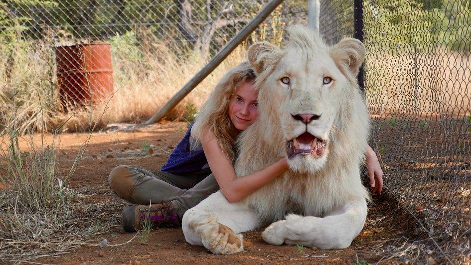 ТОП-20 самых ожидаемых фильмов мирового кино - девочка миа и белый лев