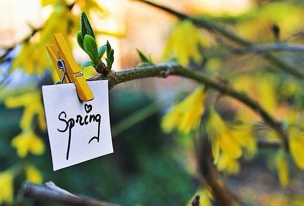 Весна-10 причин полюбить март