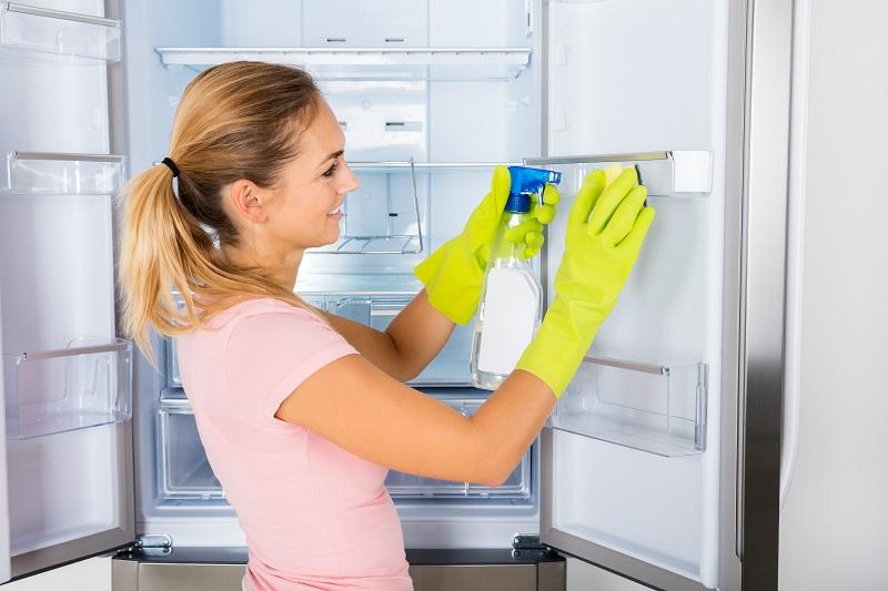 моем холодильник бытовой химией