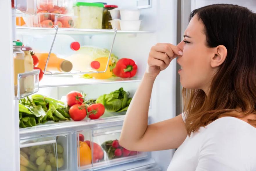 Избавляемся от плохого запаха в холодильнике - неприятный запах в холодильнике
