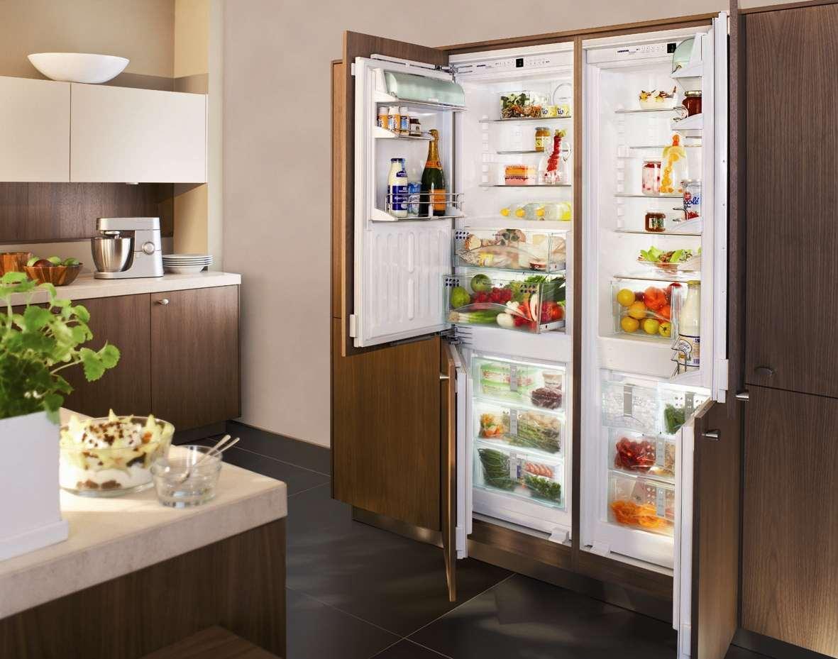 Как выбрать холодильник_на что нужно обратить внимание - большой встроенный холодильник