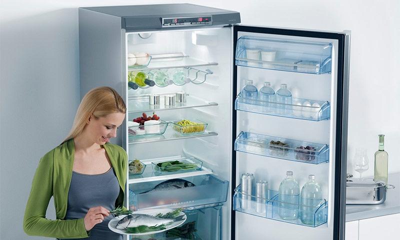 Как выбрать холодильник_на что нужно обратить внимание - холодильник no frost