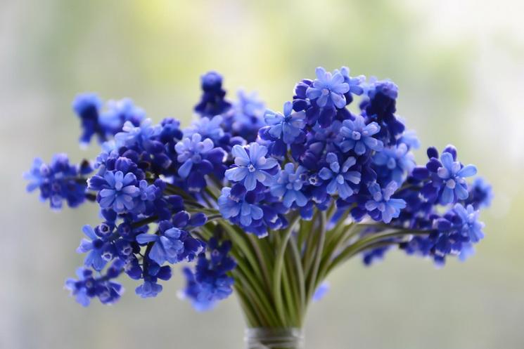 Весенний букет-10 причин полюбить апрель