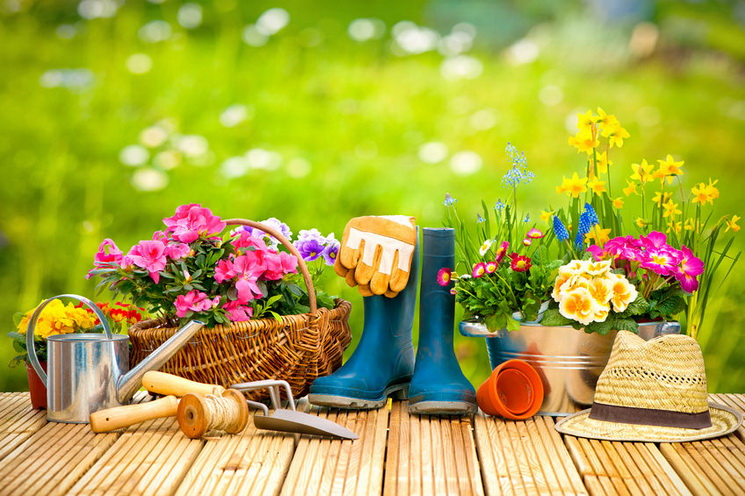 Весенний сад-10 причин полюбить апрель