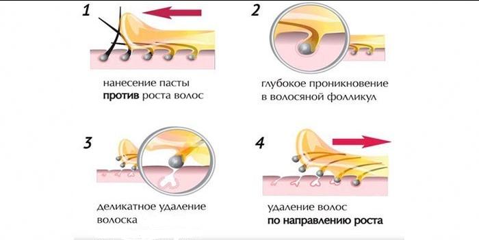 Механізм нанесення паст