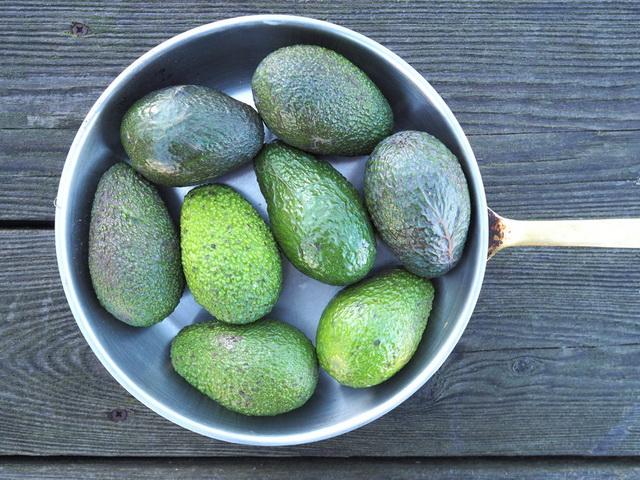 Авокадо-плоды