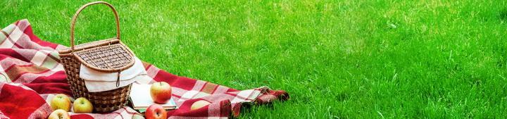 Идеальный пикник-как организовать