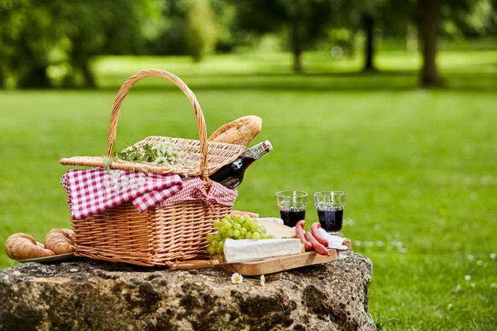 Корзина для пикника-фото