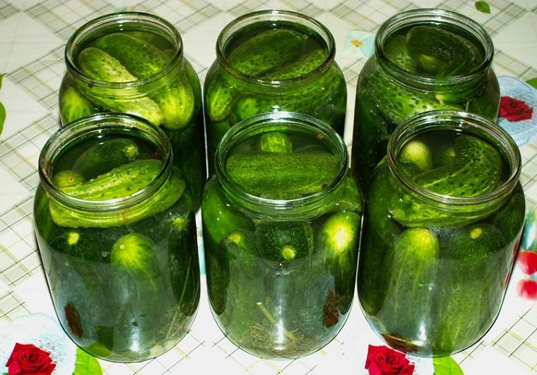 Огурцы с листьями смородины