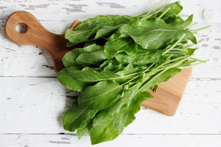 Щавель-зеленое меню