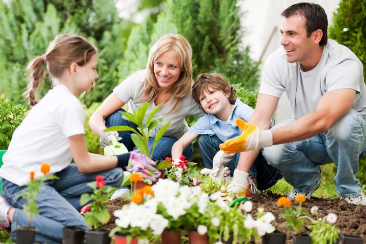 Spring Gardening-семейный досуг