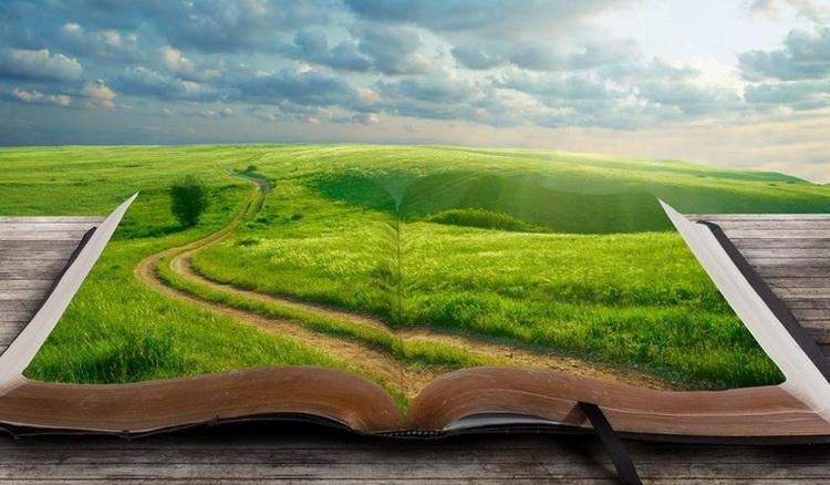 Книги-новый опыт