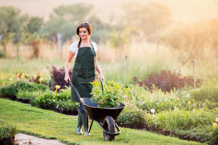 Работа на даче и в саду-сколько тратится калорий