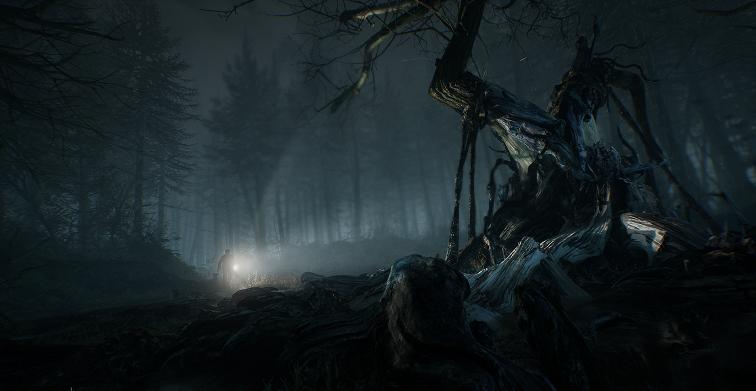 Ужастик Ведьма из Блэр для Xbox и ПК 2