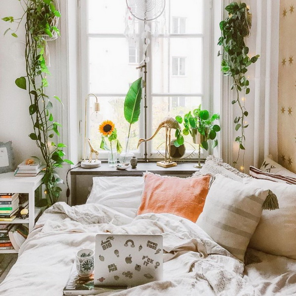 Зеленое утро-лето-2019