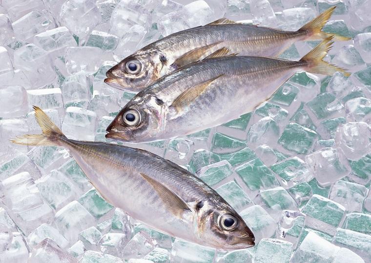 Что можно замораживать в морозильной камере и как это правильно делать - рыба и лёд